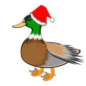 A Christmas duck isolated on a white background — Stock Vector