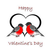 A couple of cute bullfinches (pyrrhula) with a heart. Valentine' — Stock Vector