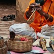Stock Photo: Indisnake-charming in Jaipur