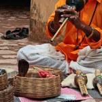 Indian snake-charming in Jaipur — Stock Photo