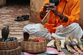 Indian snake-charming in Jaipur — Stock Photo