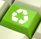 3D Green Computer Key — Stock Photo