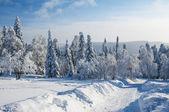 Winter-straße in den bergen — Stockfoto