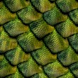 3d abstract Seamless snake skin, reptile scale — Foto de stock #26602865