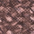 Snakeskin background — Stock Photo