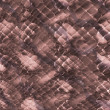 Snakeskin background — Stock Photo #26685705