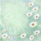 Sfondo floreale, la trama della tela, 3d — Foto Stock