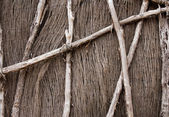 Natural Fence — Stock Photo