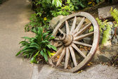Garden Wooden Wheel — Stock Photo