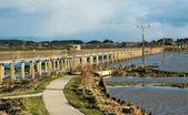Whirokino gestell über floodway — Stockfoto