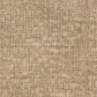Carpet Backing Texture — Stock Photo
