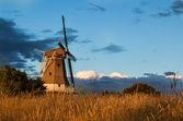 Summer Windmill — Foto Stock