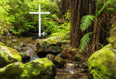 Native Bush Cross — Stockfoto