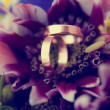 Wedding rings in flowers background — Stock fotografie