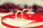 Snubní prsteny s mašlí — Stock fotografie