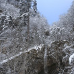冬の風景 — Stock fotografie