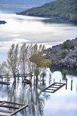 Lake đurađ — Stockfoto