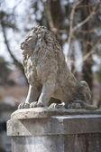 The stone lion — Stock Photo