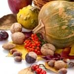 Autumn fruits — Stock Photo #32781399