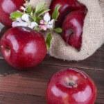 Apples — Stock Photo #45050113