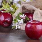 Apples — Stock Photo #45050179