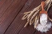 Wheat and flour — Stock Photo