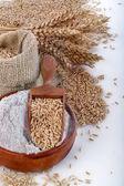 Whole grain flour — Stock Photo