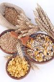 Muesli, cornflakes and ripe wheat — Foto Stock