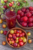 Juice from sloes and plums — Stock Photo