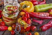 Canned pepper and tomato — Stock Photo