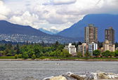 Parc riverain & montagnes — Photo