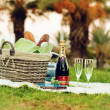 Foto de Stock  : Picnic with Piper Heidsieck Champagne