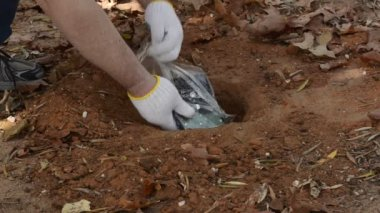 Somebody conceals a hard drive under a ground — Stock Video