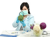 Expert carefully inspecting a broccoli in laboratory — Stock Photo
