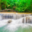 Deep jungle forest  Erawan waterfall National Park — Stock Photo