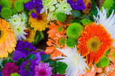 Close up Bunch of flowers — Stock Photo