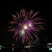Fogos de artifício coloridos no céu noturno — Foto Stock