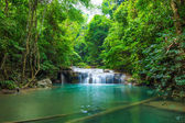 Deep forest waterfall at Erawan waterfall National Park  — Zdjęcie stockowe