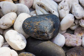 Rocky, stony texture  — Stock Photo