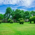 Animal shaped bush in botanical garden — Stock Photo #50347781