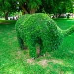 Animal shaped bush in botanical garden — Stock Photo #50347837
