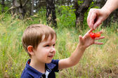 Boy takes cherries — Stock Photo