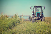 Old tractor mowing corn in the field close-up toning vintage eff — Stock Photo