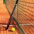 Tennis ball and racket are near the net vertical — Stock Photo #45837941
