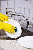 Mules manos en guantes lavar la placa vertical 0908 — Foto de Stock