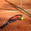 Tennis ball and racket are near the net vertical — Stock Photo #47373417