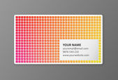 Colorful business card template vector — Stock Vector