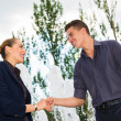 business shake hands — Stock Photo