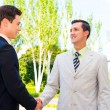 Partner shaking hands — Stock Photo