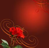 Rose, sfondo illustrazione — Foto Stock